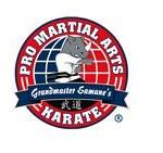 Educacion Infantil y Tutorías: Pro Martial Arts